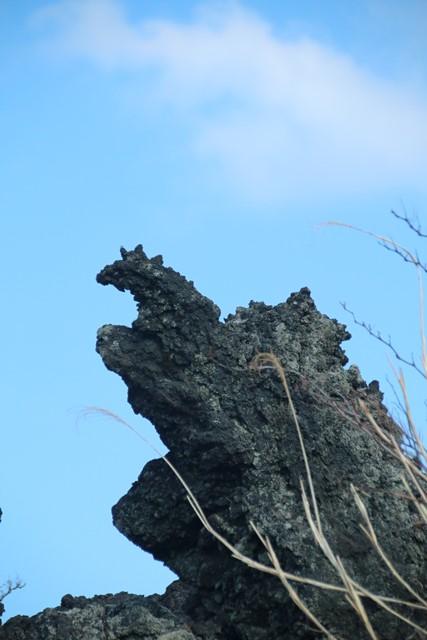 ポケモン岩